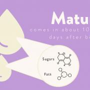 Mature Milk